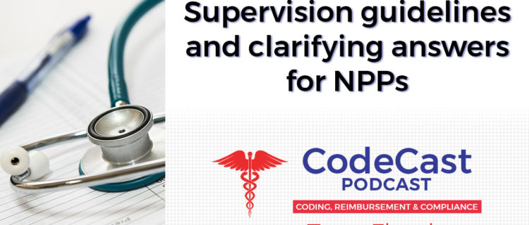 Supervision guidelines and clarifying answers for NPPs
