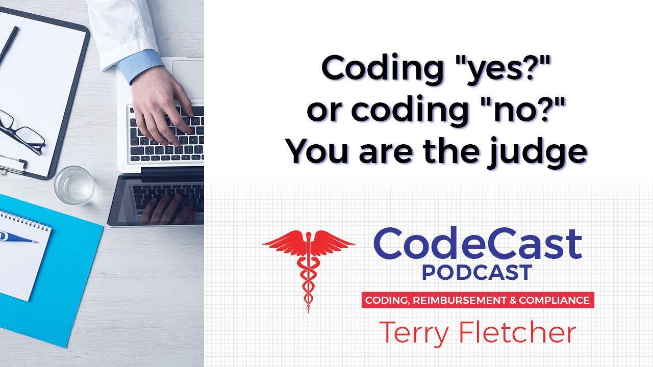 """Coding """"yes?"""" or coding """"no?"""" You are the judge"""