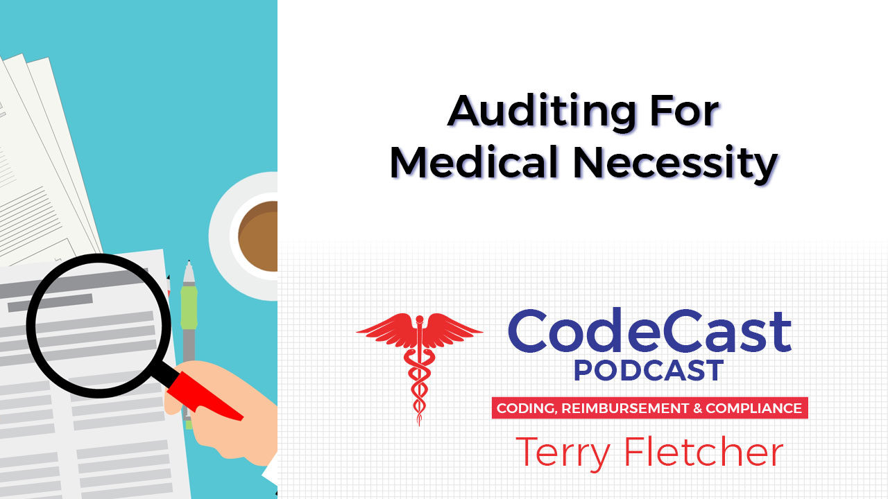 Auditing For Medical Necessity